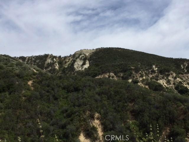 70499 Vineyard Canyon Rd, San Miguel, CA 93451 Photo 10