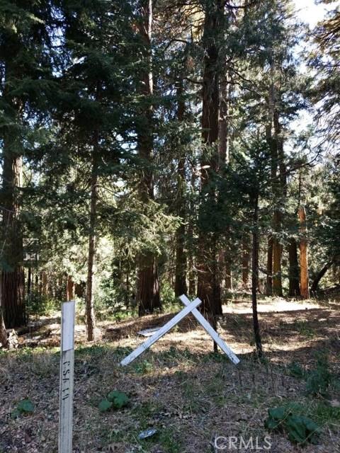 0 Lakeland View Road, Cedarpines Park, CA 92322