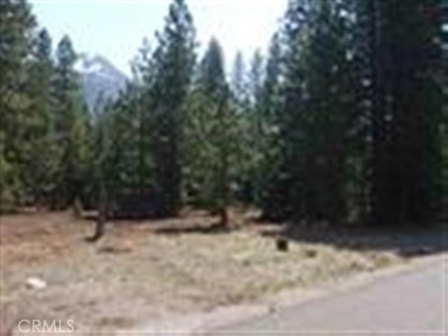 9 Old Stage Loop, Weed, CA 96094