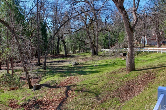 52946 Timberview Rd, North Fork, CA 93643 Photo 49