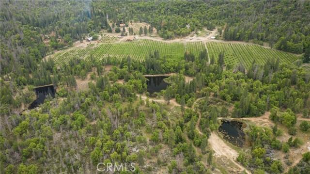 65501 Mammoth Rd, North Fork, CA 93643 Photo 70