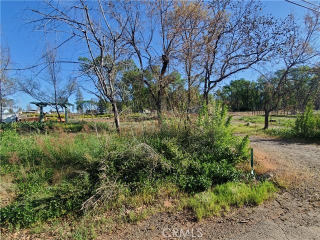 883 Deer Creek Lane, Paradise, CA 95969