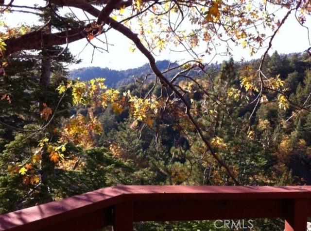 33006 Falling Leaf Ln, Arrowbear, CA 92382 Photo 41