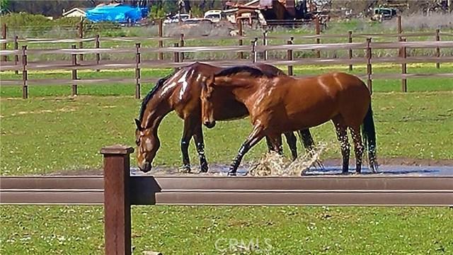 17470 Morgan Valley Rd, Lower Lake, CA 95457 Photo 23