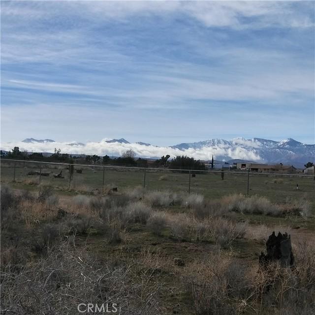 10611 Yucca Terrace Dr, Oak Hills, CA 92344 Photo 3