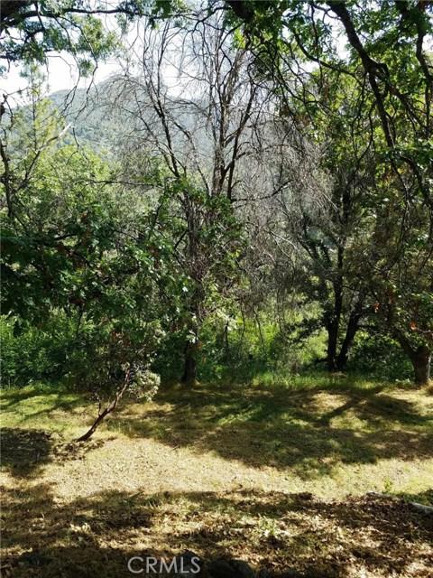 54576 Pinchot Dr, North Fork, CA 93643 Photo 18