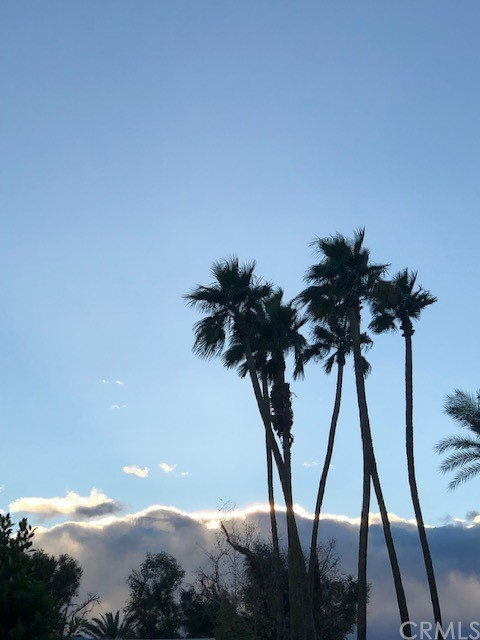36. 42905 Texas Avenue Palm Desert, CA 92211