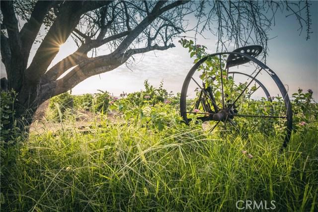 33515 Rancho California Rd, Temecula, CA 92591 Photo 19