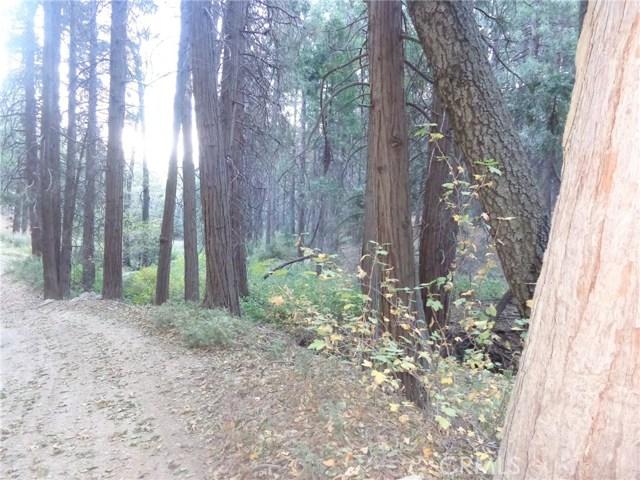 0 burnt Mill Canyon Road, Cedarpines Park, CA 92322