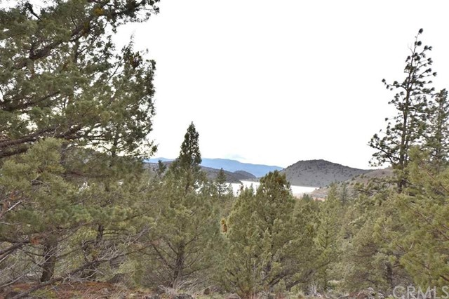 0 Lot 132 Mount Blanch Place, Weed, CA 96094