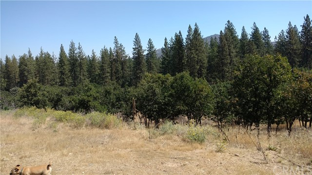 4029 Travis Heights, Yreka, CA 96097