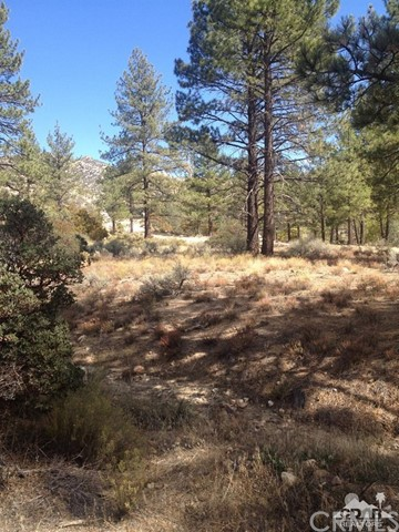 0 Table Mountain Rd. -Lot 20, Mountain Center, CA 92561