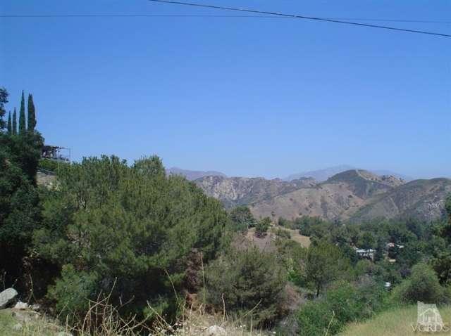 12021 Inspiration, Kagel Canyon, CA 91342 Photo 22