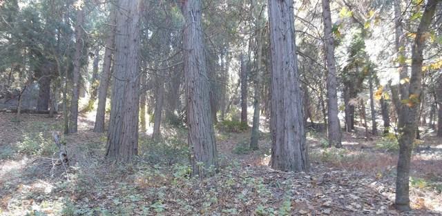 0 El Valle Road, Cedarpines Park, CA 92322