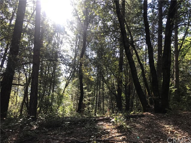 0 stephens ridge, Berry Creek, CA 95916