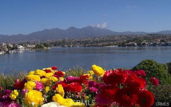 Image 11 of 27897 Violet #184, Mission Viejo, CA 92691