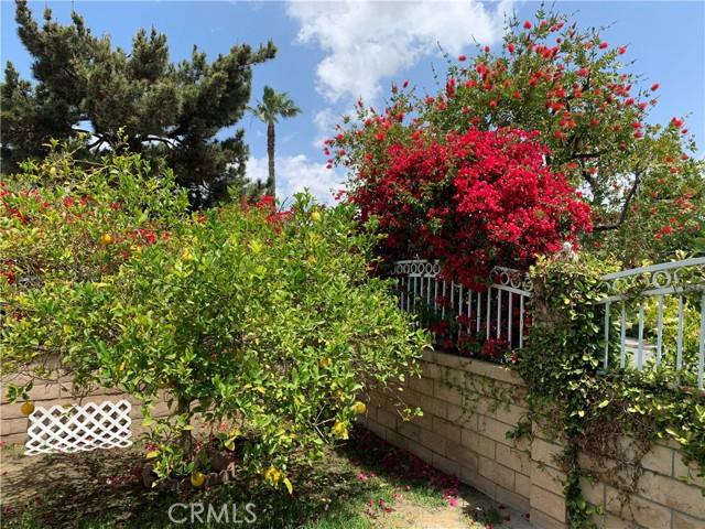 Image 24 of 27092 Via San Diego, Mission Viejo, CA 92691