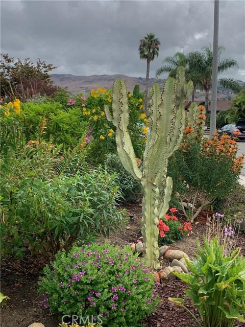 Image 36 of 25511 Via Inez Rd, San Juan Capistrano, CA 92675