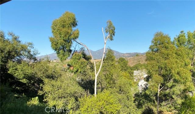 31881 Via Pato, Coto de Caza, CA 92679 Photo 33
