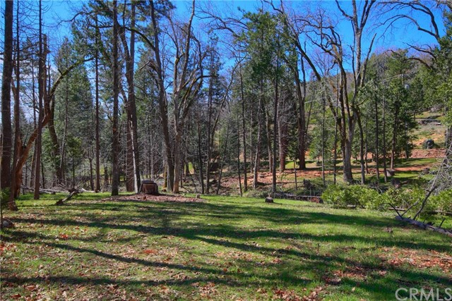 52946 Timberview Rd, North Fork, CA 93643 Photo 52