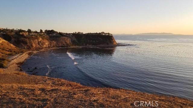 Walking distant to Ocean
