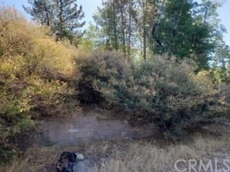 141 Agate, Cedar Glen, CA 92321