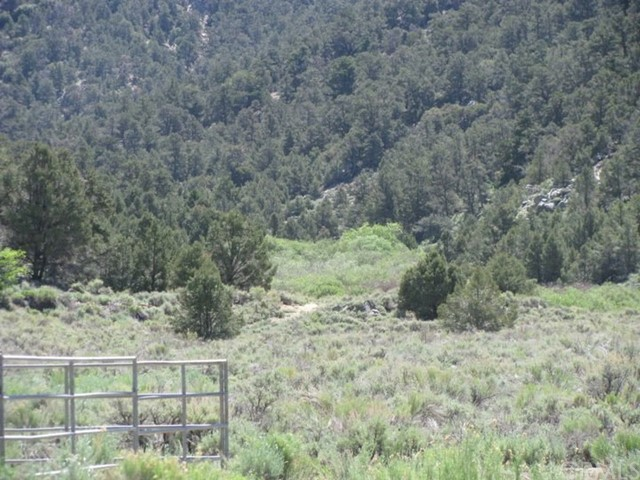 0 Long Canyon, Unincorporated, CA 93527