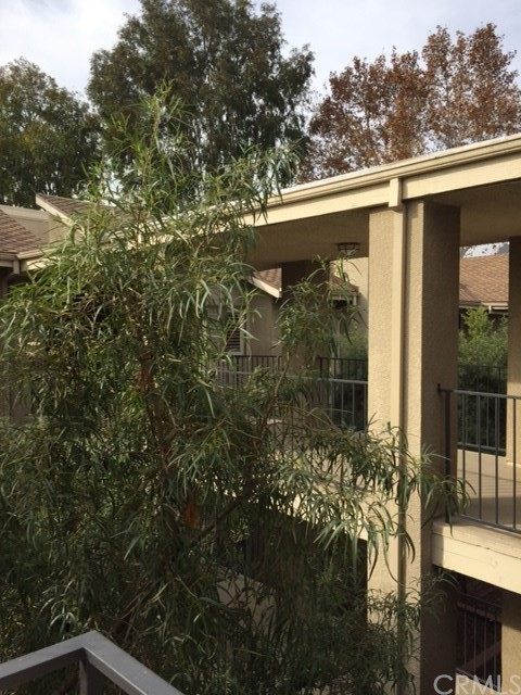 1000 E California Bl, Pasadena, CA 91106 Photo 16