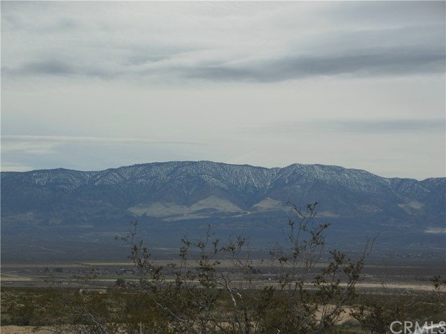 92356 Planet Rd, Lucerne Valley, CA  Photo 3