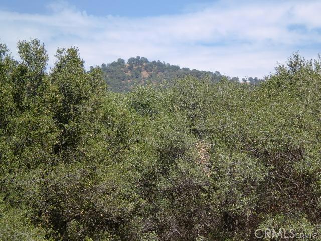 0 Apache Ranch Road, Ahwahnee, CA 93601