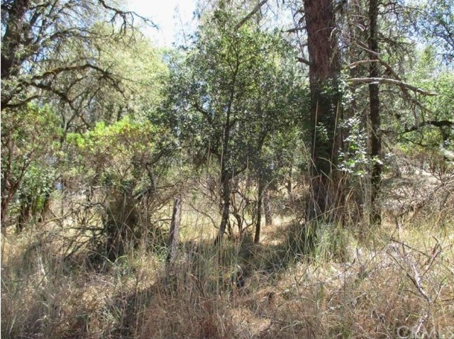 15201 Magnolia Road, Grass Valley, CA 95949