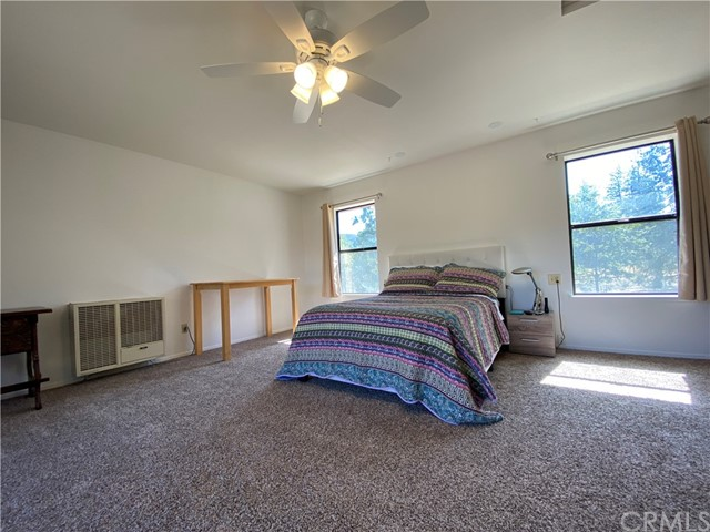 Master Bedroom has large windows.  Nice and bright.