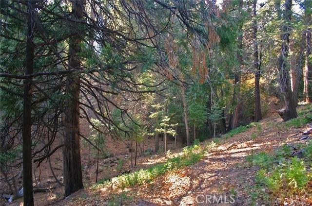 0 Meadow Lane, Cedar Glen, CA 92321