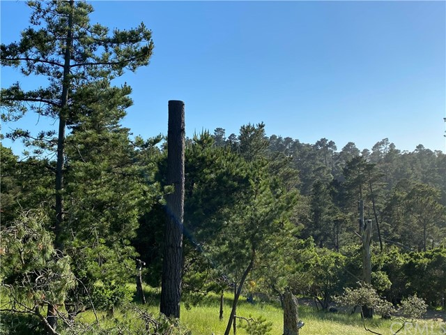 0 Richard Av, Cambria, CA 93428 Photo 0