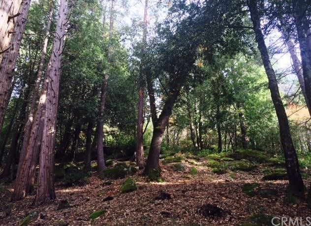 0 Forest Glade, Berry Creek, CA 95916