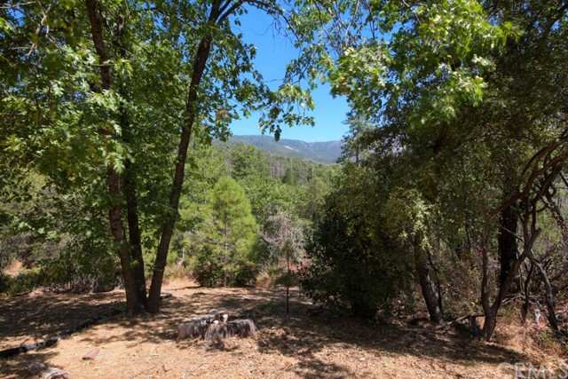 56991 Gentle Wy, North Fork, CA 93643 Photo 60