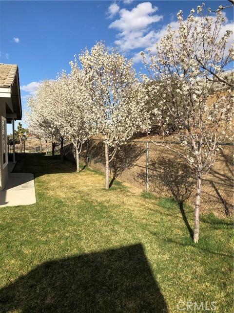 8071 Anaconda Av, Oak Hills, CA 92344 Photo 61