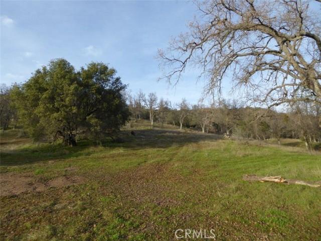 58345 Road 235, North Fork, CA 93643 Photo 3
