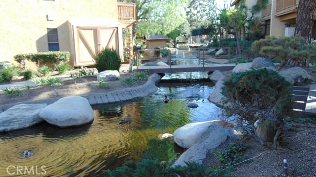104 Tangelo, Irvine, CA 92618 Photo 1