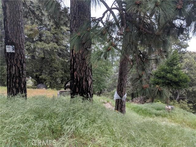 857 Mozumdar Drive, Cedarpines Park, CA 92322
