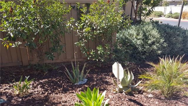 31213 Black Maple Dr, Temecula, CA 92592 Photo 24