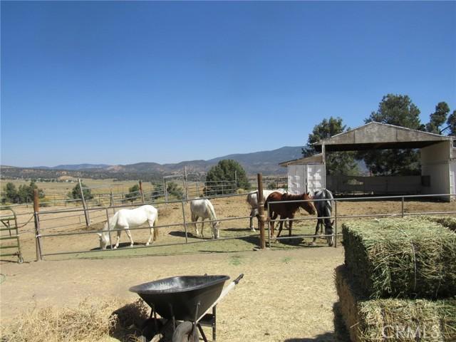 16530 Lockwood Valley Rd, Frazier Park, CA 93225 Photo 4