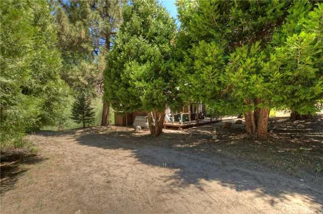 33558 Green Valley Lake Rd, Green Valley Lake, CA 92341 Photo 20