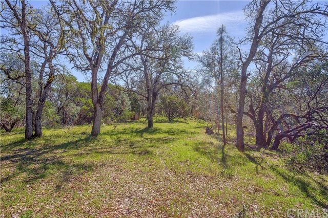 18185 Little High Valley Rd, Lower Lake, CA 95457 Photo 8