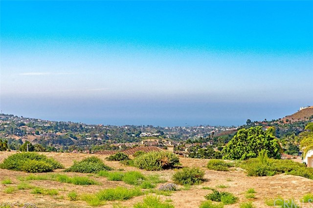 3015 Eminencia Del Norte, San Clemente, CA 92673