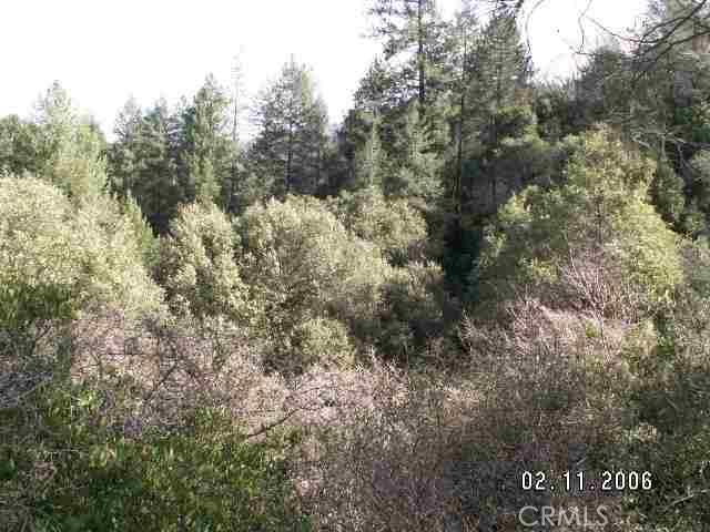 0 bloomer hill, Berry Creek, CA 95916