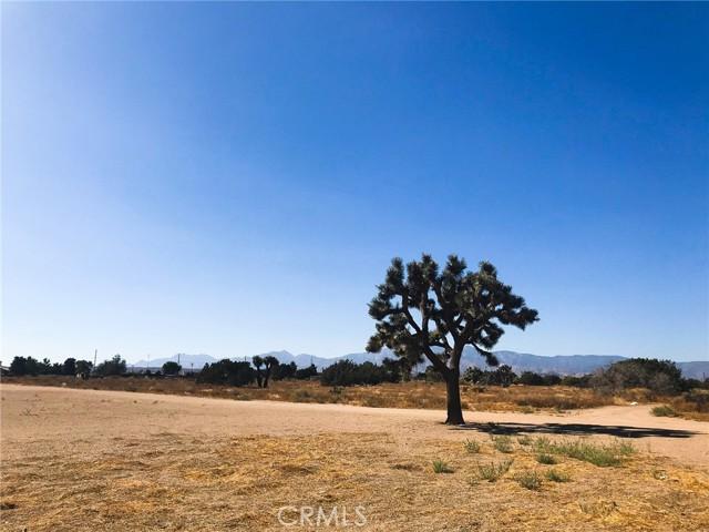 0 White Fox, Oak Hills, CA 92344 Photo 4