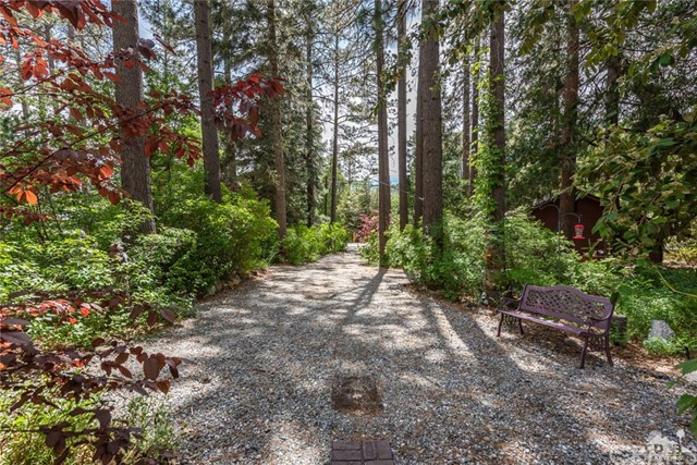 25230 Lodge Road, Idyllwild, CA 92549