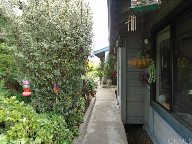 4985 Grove St, Cambria, CA 93428 Photo 3