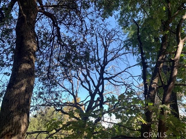 Image 3 of 1291 Canyon Dr, Julian, CA 92036